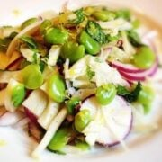 Fava, Radish and Shaved Fennel Salad