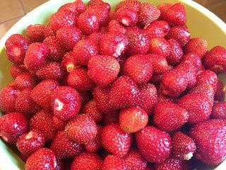 stemless strawberries