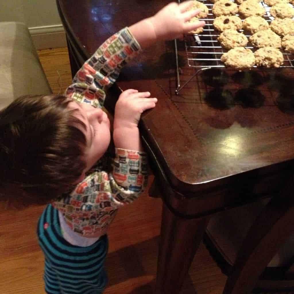 Cookie Thief - The Lemon Bowl