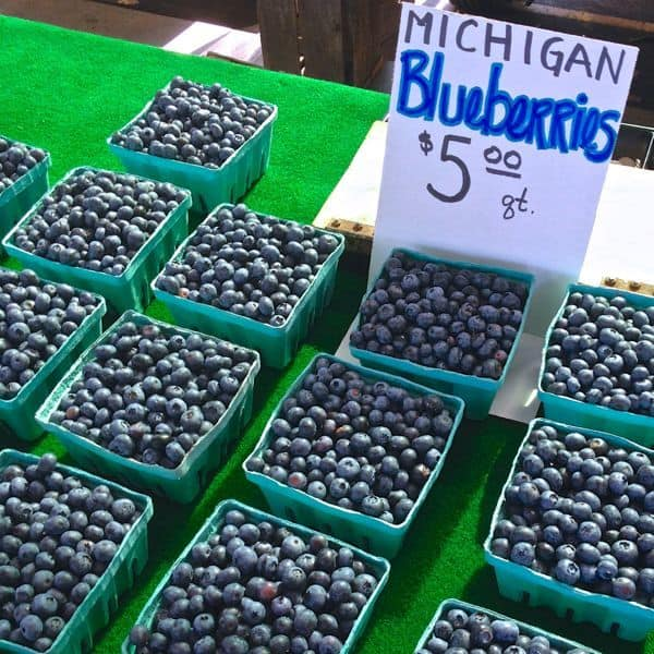 Michigan Blueberries - The Lemon Bowl