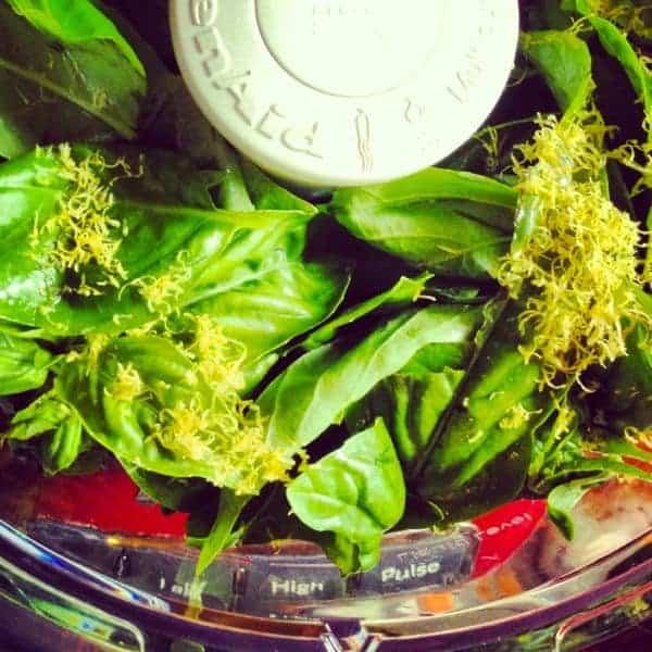 Pesto in Food Processor - The Lemon Bowl