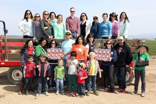 365 days of California strawberries farm tour. (Photo Rene Macura)