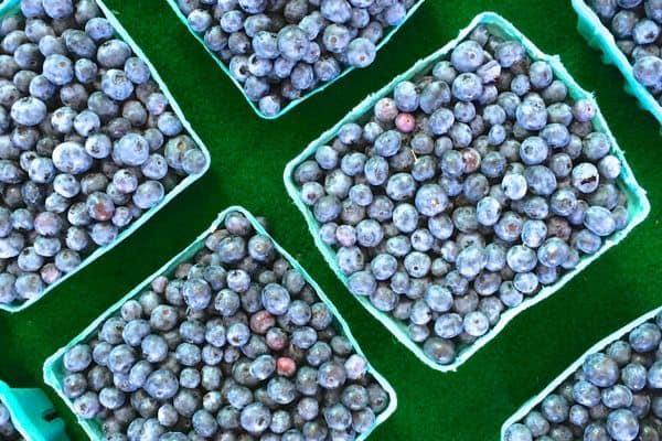 Blueberries from Market - The Lemon Bowl