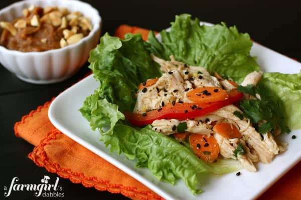 600afd_X_IMG_3838_asian-chicken-salad-lettuce-wraps-copy