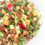 Spelt Salad with Apples, Scallions and Cheese - The Lemon Bowl