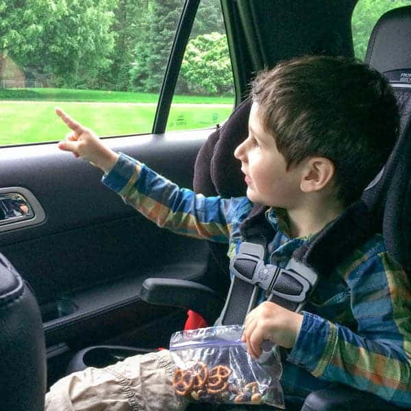 Toddler-Friendly Road Trip Snacks - The Lemon Bowl