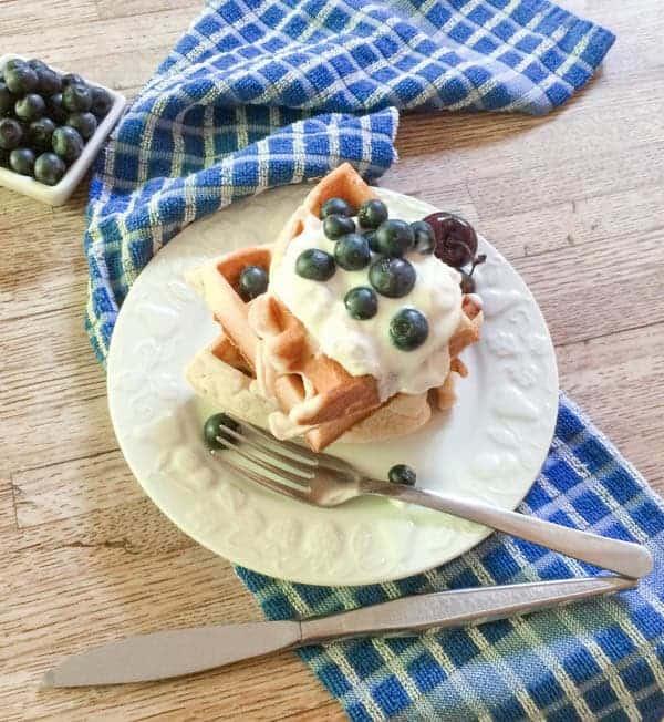 Food Photo Session Waffles and Jam - The Lemon Bowl