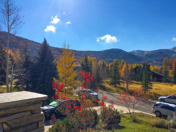 Foliage and Mountains - The Lemon Bowl