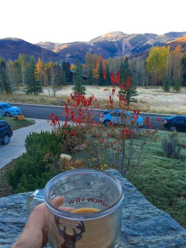 Moutainside Coffee - The Lemon Bowl