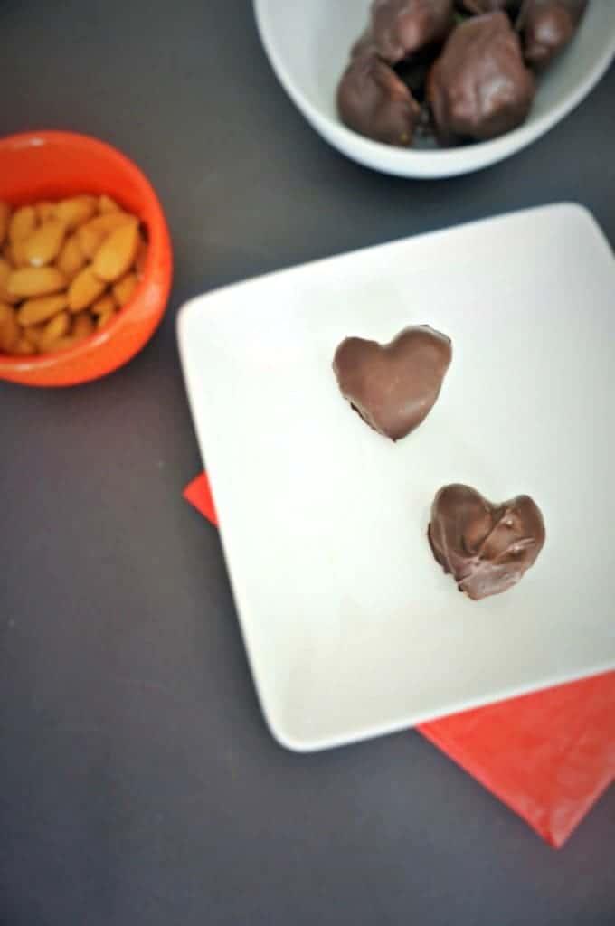 Chocolate Cherry Protein Bites - Mindfull Mom