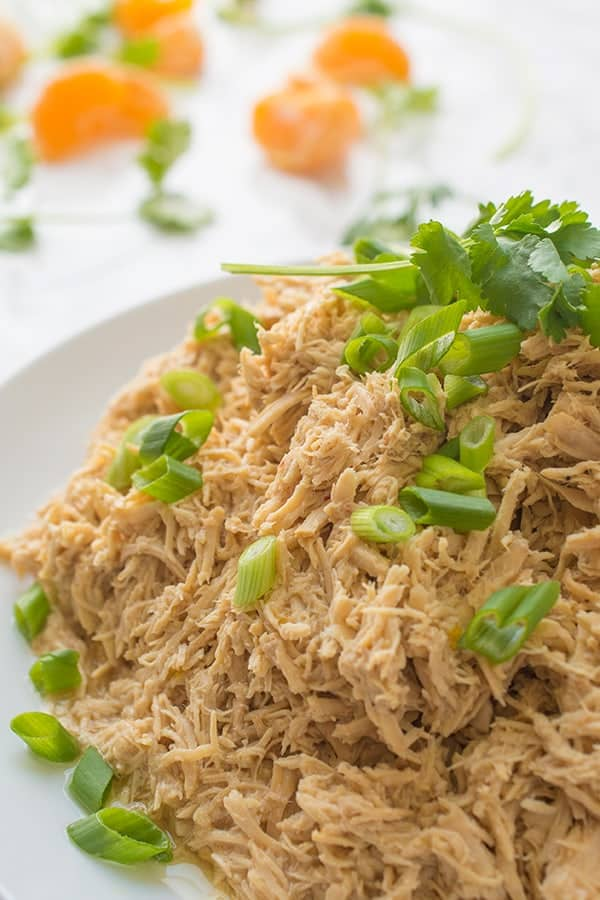 Easy fast chicken crock pot recipes