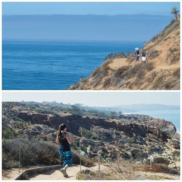 hiking-torrey-pines-state-reserve