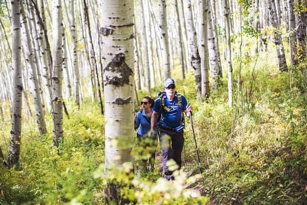 hiking-aspens