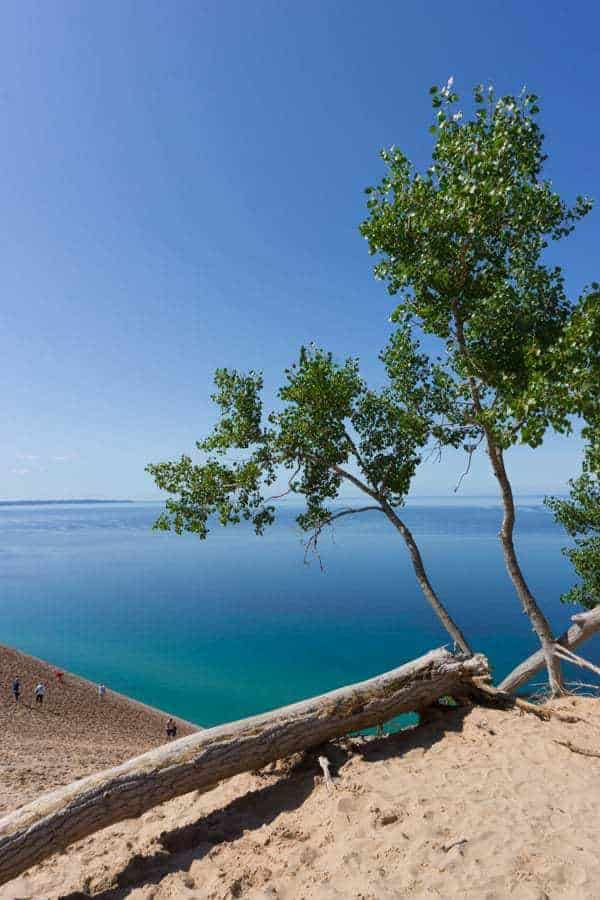 Traverse City Travel Guide