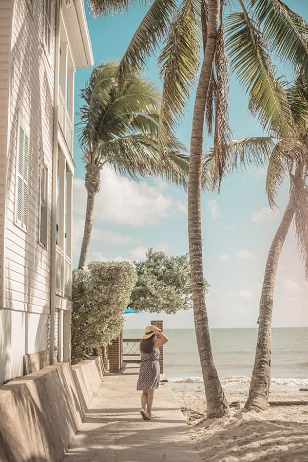 Liz in Key West Palm Trees